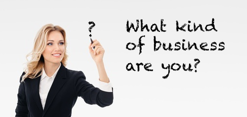 What Kind Of Business Are You?